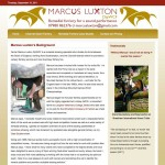 Image showing Website Design and Build for Marcus Luxton